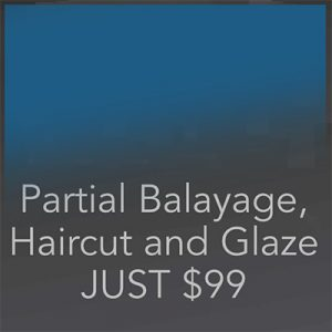 Partial Balayage, Haircut, Glaze Southlake - Hidden Door Salon