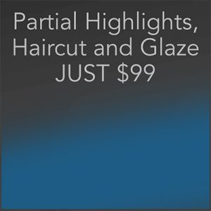Partial Highlights, Haircut, Glaze Southlake - Hidden Door Salon